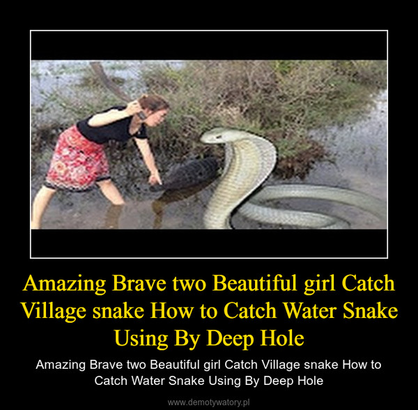 Amazing Brave two Beautiful girl Catch Village snake How to Catch Water Snake Using By Deep Hole – Amazing Brave two Beautiful girl Catch Village snake How to Catch Water Snake Using By Deep Hole
