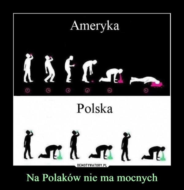 Na Polaków nie ma mocnych –  Ameryka Polska