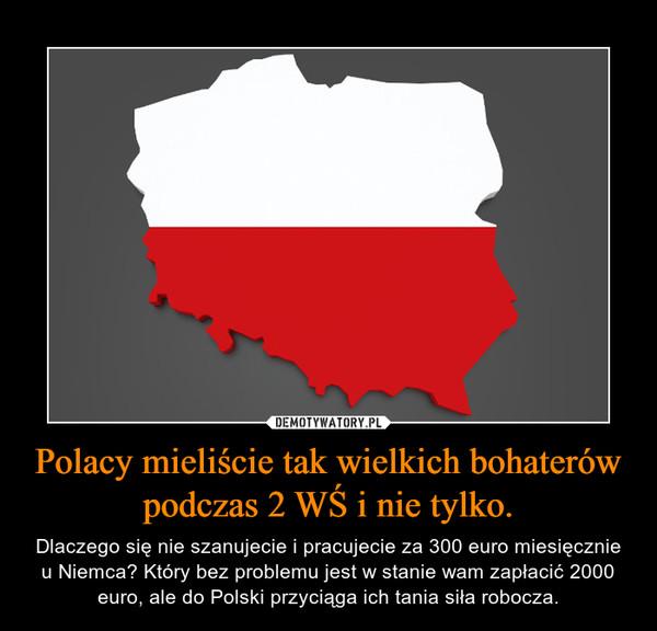 Polacy mieliście tak wielkich bohaterów podczas 2 WŚ i nie tylko. – Dlaczego się nie szanujecie i pracujecie za 300 euro miesięcznie u Niemca? Który bez problemu jest w stanie wam zapłacić 2000 euro, ale do Polski przyciąga ich tania siła robocza.