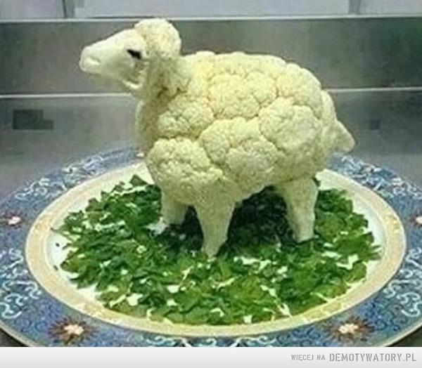 Baranina po wegetariańsku –