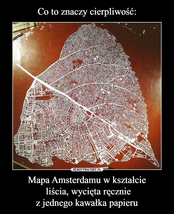 Mapa Amsterdamu w kształcie liścia, wycięta ręczniez jednego kawałka papieru –
