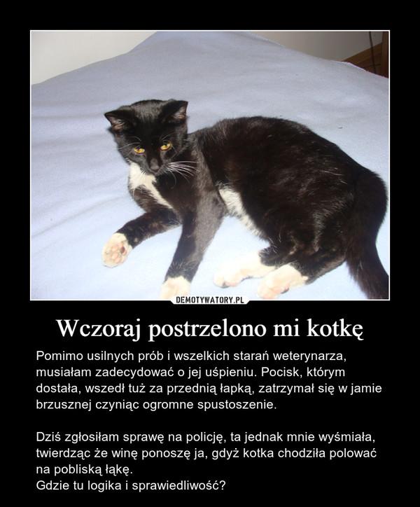 Wczoraj postrzelono mi kotkę – Pomimo usilnych prób i wszelkich starań weterynarza, musiałam zadecydować o jej uśpieniu. Pocisk, którym dostała, wszedł tuż za przednią łapką, zatrzymał się w jamie brzusznej czyniąc ogromne spustoszenie.Dziś zgłosiłam sprawę na policję, ta jednak mnie wyśmiała, twierdząc że winę ponoszę ja, gdyż kotka chodziła polować na pobliską łąkę. Gdzie tu logika i sprawiedliwość?