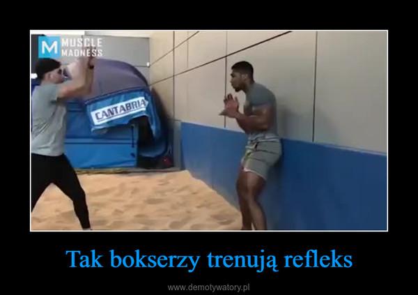 Tak bokserzy trenują refleks –