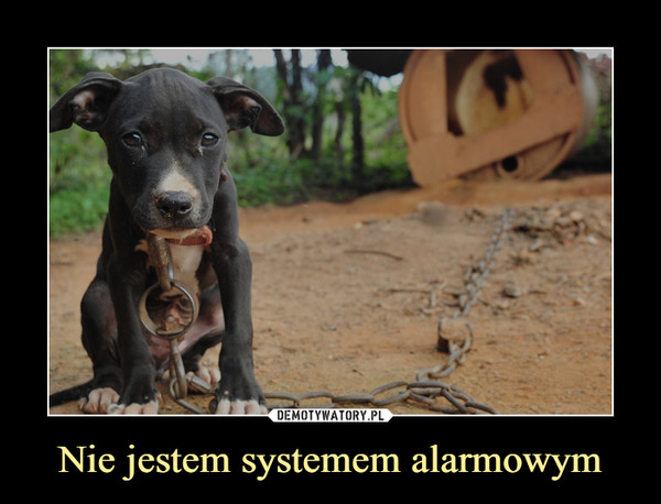 Nie jestem systemem alarmowym –