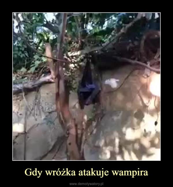Gdy wróżka atakuje wampira –