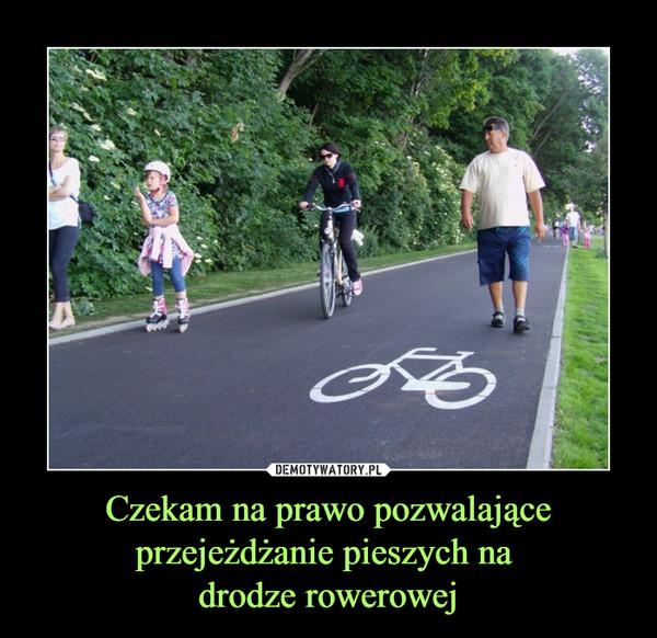 Czekam na prawo pozwalające przejeżdżanie pieszych na drodze rowerowej –
