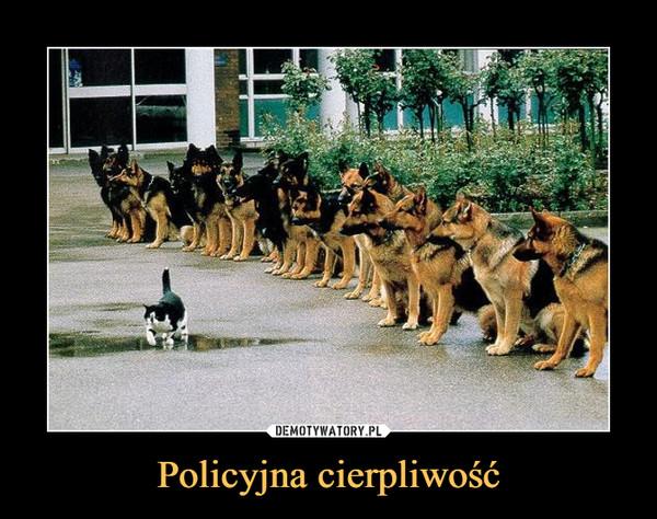 Policyjna cierpliwość –