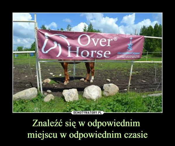 Znaleźć się w odpowiednim miejscu w odpowiednim czasie –  Over Horse
