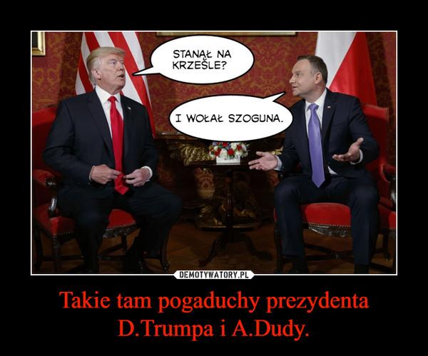 Takie tam pogaduchy prezydenta D.Trumpa i A.Dudy. –