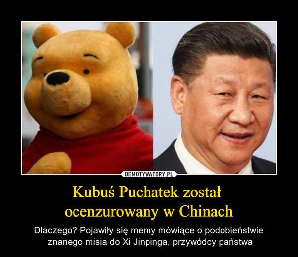 Kubuś Puchatek został ocenzurowany w Chinach – Dlaczego? Pojawiły się memy mówiące o podobieństwie znanego misia do Xi Jinpinga, przywódcy państwa