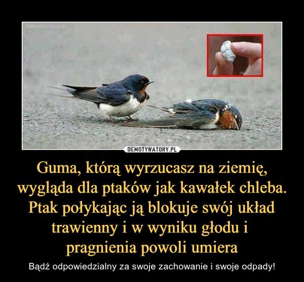 Guma, którą wyrzucasz na ziemię, wygląda dla ptaków jak kawałek chleba. Ptak połykając ją blokuje swój układ trawienny i w wyniku głodu i pragnienia powoli umiera – Bądź odpowiedzialny za swoje zachowanie i swoje odpady!