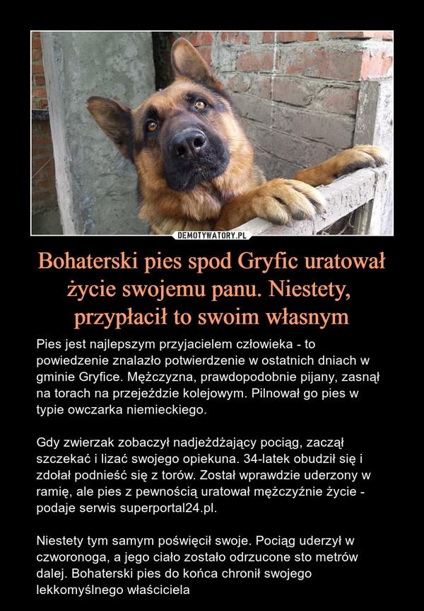 Bohaterski pies spod Gryfic uratował życie swojemu panu. Niestety, przypłacił to swoim własnym – Pies jest najlepszym przyjacielem człowieka - to powiedzenie znalazło potwierdzenie w ostatnich dniach w gminie Gryfice. Mężczyzna, prawdopodobnie pijany, zasnął na torach na przejeździe kolejowym. Pilnował go pies w typie owczarka niemieckiego.Gdy zwierzak zobaczył nadjeżdżający pociąg, zaczął szczekać i lizać swojego opiekuna. 34-latek obudził się i zdołał podnieść się z torów. Został wprawdzie uderzony w ramię, ale pies z pewnością uratował mężczyźnie życie - podaje serwis superportal24.pl.Niestety tym samym poświęcił swoje. Pociąg uderzył w czworonoga, a jego ciało zostało odrzucone sto metrów dalej. Bohaterski pies do końca chronił swojego lekkomyślnego właściciela