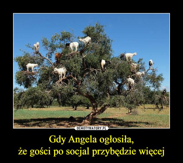 Gdy Angela ogłosiła,że gości po socjal przybędzie więcej –