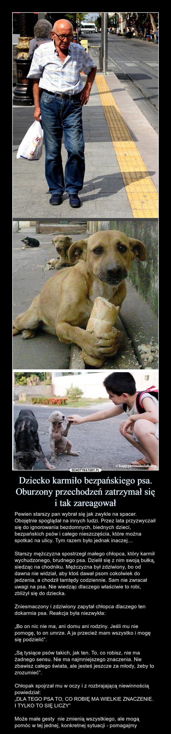 """Dziecko karmiło bezpańskiego psa.Oburzony przechodzeń zatrzymał sięi tak zareagował – Pewien starszy pan wybrał się jak zwykle na spacer. Obojętnie spoglądał na innych ludzi. Przez lata przyzwyczaił się do ignorowania bezdomnych, biednych dzieci, bezpańskich psów i całego nieszczęścia, które można spotkać na ulicy. Tym razem było jednak inaczej… Starszy mężczyzna spostrzegł małego chłopca, który karmił wychudzonego, brudnego psa. Dzielił się z nim swoją bułką, siedząc na chodniku. Mężczyzna był zdziwiony, bo od dawna nie widział, aby ktoś dawał psom cokolwiek do jedzenia, a chodził tamtędy codziennie. Sam nie zwracał uwagi na psa. Nie wiedząc dlaczego właściwie to robi, zbliżył się do dziecka. Zniesmaczony i zdziwiony zapytał chłopca dlaczego ten dokarmia psa. Reakcja była niezwykła:""""Bo on nic nie ma, ani domu ani rodziny. Jeśli mu nie pomogę, to on umrze. A ja przecież mam wszystko i mogę się podzielić"""".""""Są tysiące psów takich, jak ten. To, co robisz, nie ma żadnego sensu. Nie ma najmniejszego znaczenia. Nie zbawisz całego świata, ale jesteś jeszcze za młody, żeby to zrozumieć"""".Chłopak spojrzał mu w oczy i z rozbrajającą niewinnością powiedział:""""DLA TEGO PSA TO, CO ROBIĘ MA WIELKIE ZNACZENIE. I TYLKO TO SIĘ LICZY""""Może małe gesty  nie zmienią wszystkiego, ale mogą pomóc w tej jednej, konkretnej sytuacji - pomagajmy"""