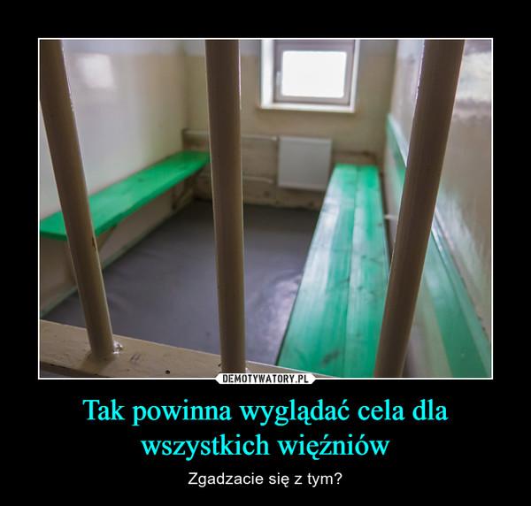 Tak powinna wyglądać cela dla wszystkich więźniów – Zgadzacie się z tym?