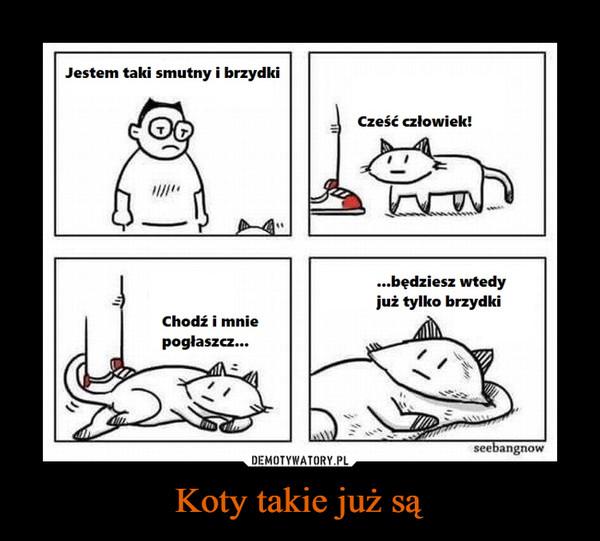 Koty takie już są –  Jestem taki smutny i brzydkiCześć człowiek!...będziesz wtedyjuż tylko brzydkiChodź i mniepogłaszcz...