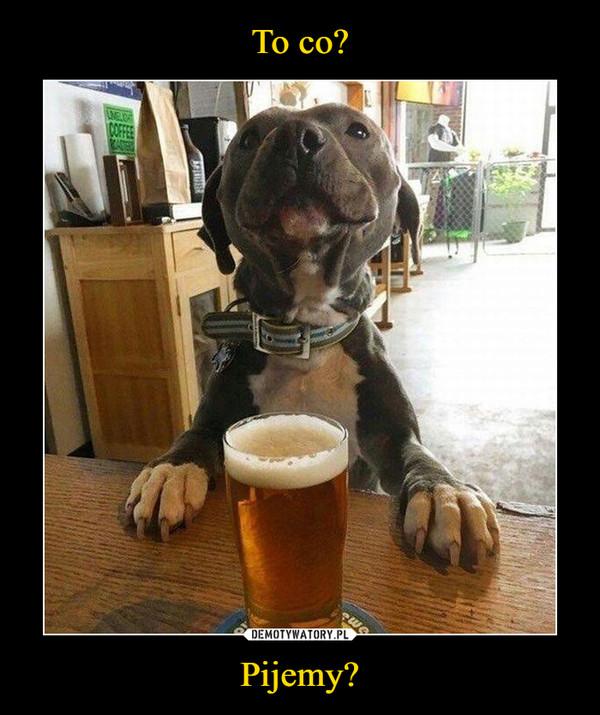 Pijemy? –