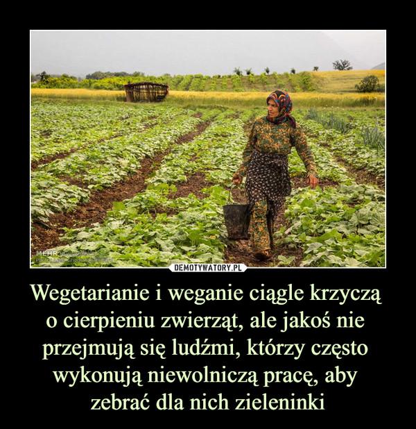 Wegetarianie i weganie ciągle krzyczą o cierpieniu zwierząt, ale jakoś nie przejmują się ludźmi, którzy często wykonują niewolniczą pracę, aby zebrać dla nich zieleninki –