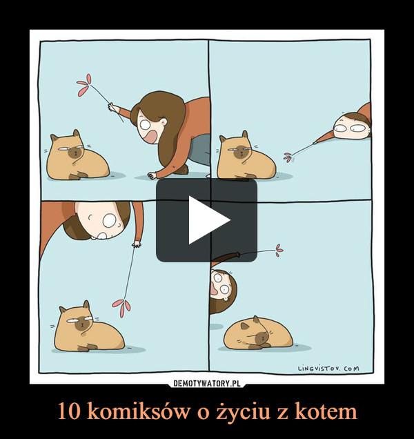 10 komiksów o życiu z kotem –