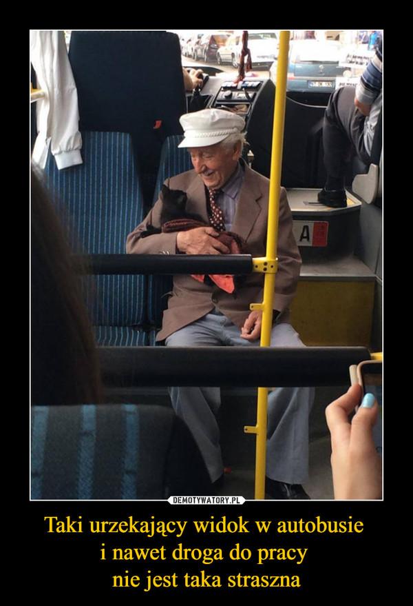 Taki urzekający widok w autobusie i nawet droga do pracy nie jest taka straszna –