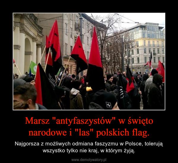 """Marsz """"antyfaszystów"""" w święto narodowe i """"las"""" polskich flag. – Najgorsza z możliwych odmiana faszyzmu w Polsce, tolerują wszystko tylko nie kraj, w którym żyją."""