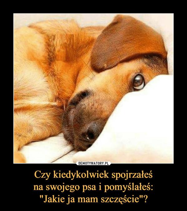 """Czy kiedykolwiek spojrzałeśna swojego psa i pomyślałeś:""""Jakie ja mam szczęście""""? –"""