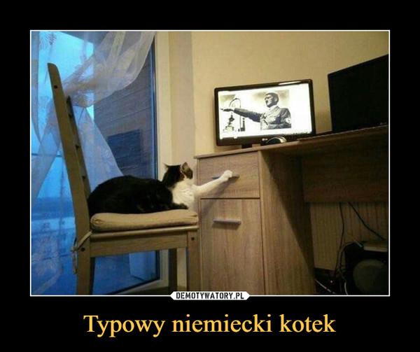 Typowy niemiecki kotek –