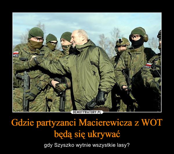 Gdzie partyzanci Macierewicza z WOT będą się ukrywać – gdy Szyszko wytnie wszystkie lasy?