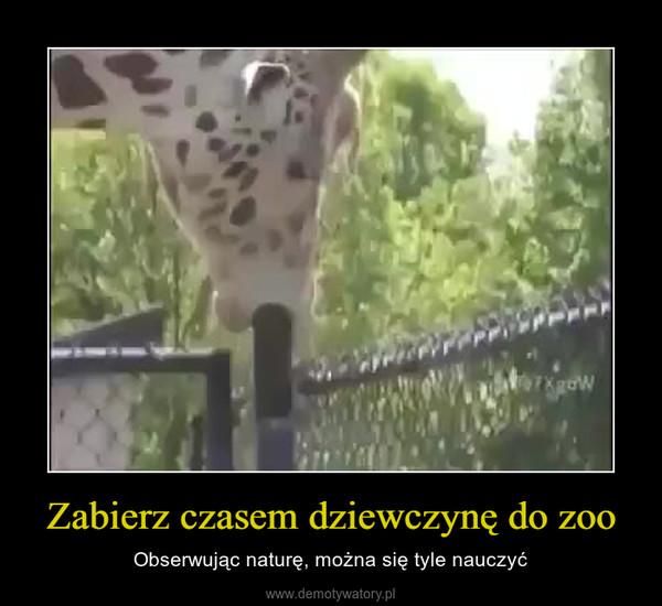 Zabierz czasem dziewczynę do zoo – Obserwując naturę, można się tyle nauczyć