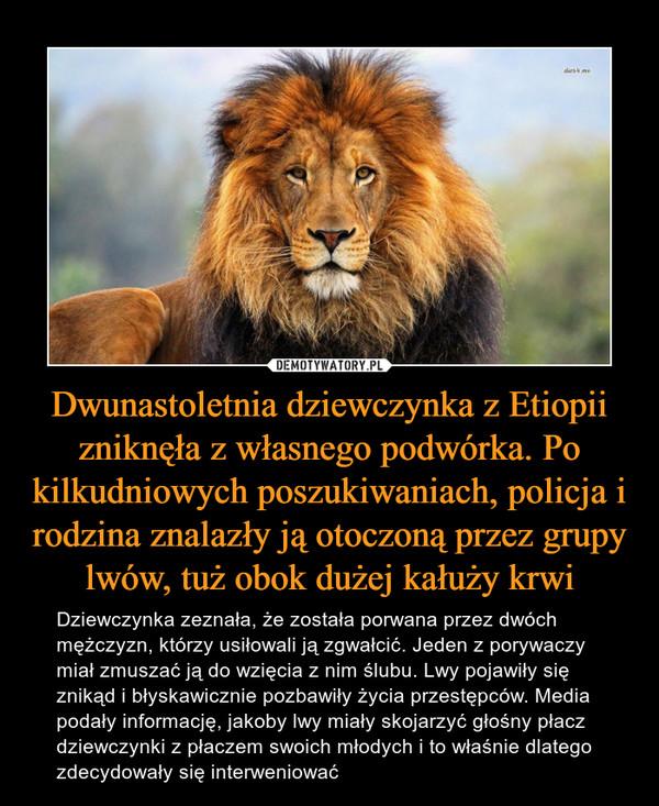Dwunastoletnia dziewczynka z Etiopii zniknęła z własnego podwórka. Po kilkudniowych poszukiwaniach, policja i rodzina znalazły ją otoczoną przez grupy lwów, tuż obok dużej kałuży krwi – Dziewczynka zeznała, że została porwana przez dwóch mężczyzn, którzy usiłowali ją zgwałcić. Jeden z porywaczy miał zmuszać ją do wzięcia z nim ślubu. Lwy pojawiły się znikąd i błyskawicznie pozbawiły życia przestępców. Media podały informację, jakoby lwy miały skojarzyć głośny płacz dziewczynki z płaczem swoich młodych i to właśnie dlatego zdecydowały się interweniować