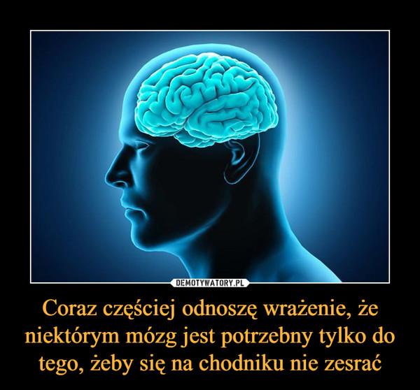 Coraz częściej odnoszę wrażenie, że niektórym mózg jest potrzebny tylko do tego, żeby się na chodniku nie zesrać –