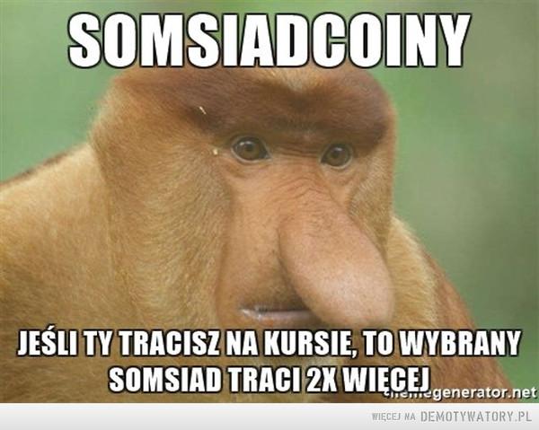 Somsiadcoiny –