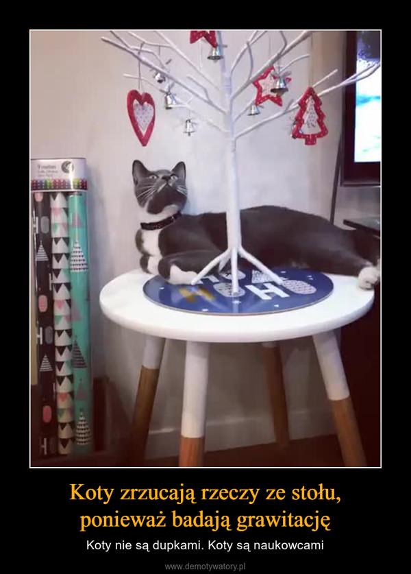 Koty Zrzucają Rzeczy Ze Stołu Ponieważ Badają Grawitację