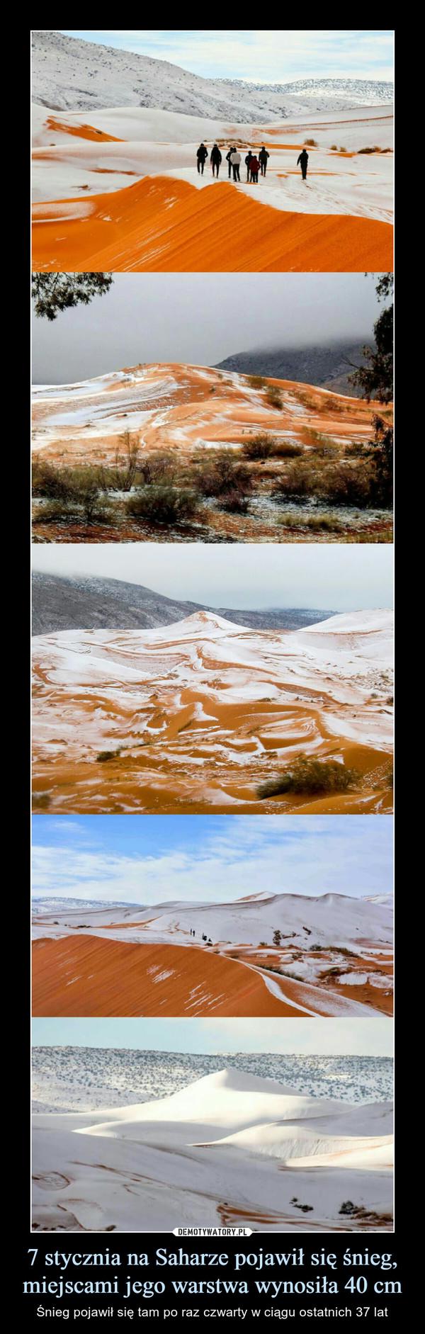 7 stycznia na Saharze pojawił się śnieg, miejscami jego warstwa wynosiła 40 cm – Śnieg pojawił się tam po raz czwarty w ciągu ostatnich 37 lat