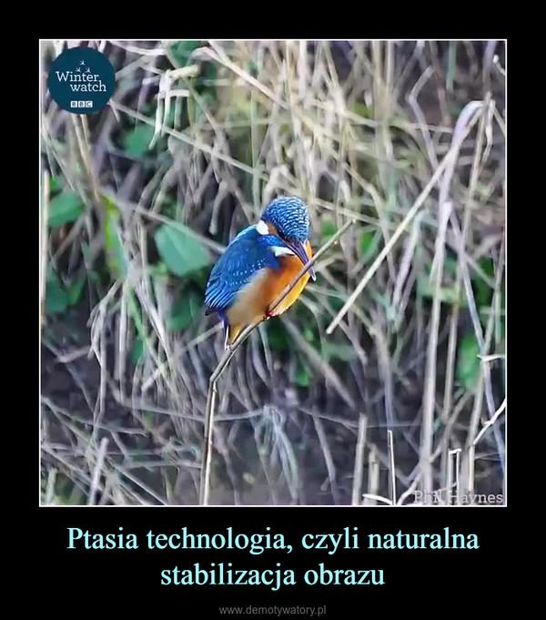 Ptasia technologia, czyli naturalna stabilizacja obrazu –