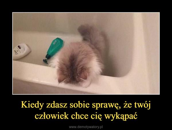 Kiedy zdasz sobie sprawę, że twój człowiek chce cię wykąpać –