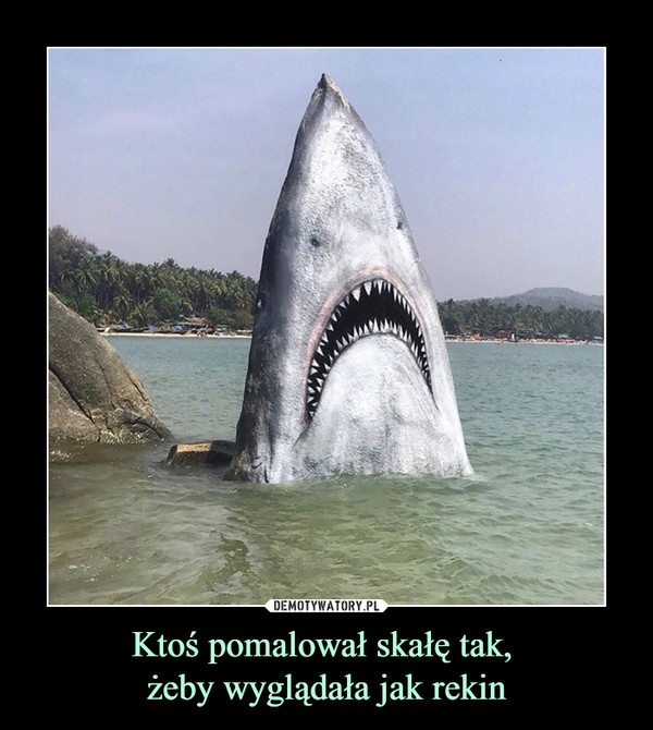 Ktoś pomalował skałę tak, żeby wyglądała jak rekin –