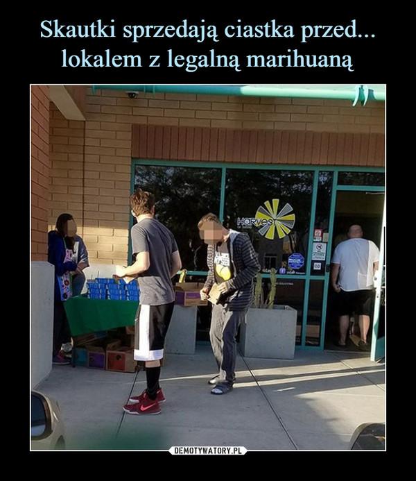 Skautki sprzedają ciastka przed... lokalem z legalną marihuaną