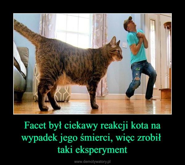 Facet był ciekawy reakcji kota na wypadek jego śmierci, więc zrobił taki eksperyment –