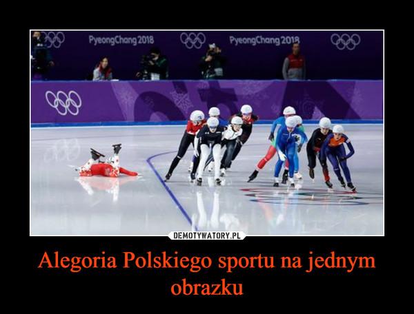 Alegoria Polskiego sportu na jednym obrazku –