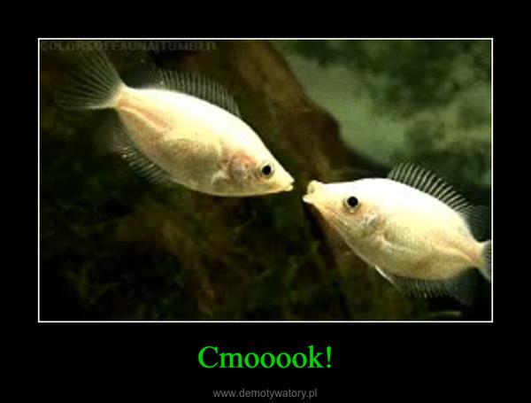 Cmooook! –