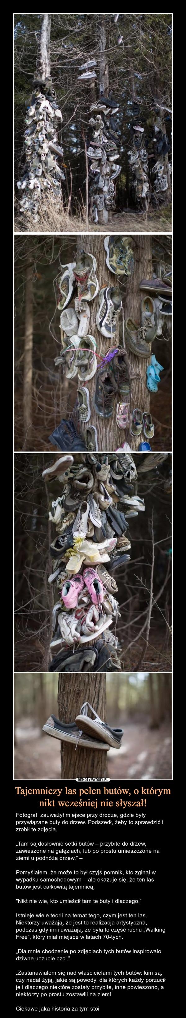 """Tajemniczy las pełen butów, o którym nikt wcześniej nie słyszał! – Fotograf  zauważył miejsce przy drodze, gdzie były przywiązane buty do drzew. Podszedł, żeby to sprawdzić i zrobił te zdjęcia.""""Tam są dosłownie setki butów – przybite do drzew, zawieszone na gałęziach, lub po prostu umieszczone na ziemi u podnóża drzew."""" – Pomyślałem, że może to był czyjś pomnik, kto zginął w wypadku samochodowym – ale okazuje się, że ten las butów jest całkowitą tajemnicą.""""Nikt nie wie, kto umieścił tam te buty i dlaczego.""""Istnieje wiele teorii na temat tego, czym jest ten las. Niektórzy uważają, że jest to realizacja artystyczna, podczas gdy inni uważają, że była to część ruchu """"Walking Free"""", który miał miejsce w latach 70-tych.""""Dla mnie chodzenie po zdjęciach tych butów inspirowało dziwne uczucie czci.""""""""Zastanawiałem się nad właścicielami tych butów: kim są, czy nadal żyją, jakie są powody, dla których każdy porzucił je i dlaczego niektóre zostały przybite, inne powieszono, a niektórzy po prostu zostawili na ziemiCiekawe jaka historia za tym stoi"""