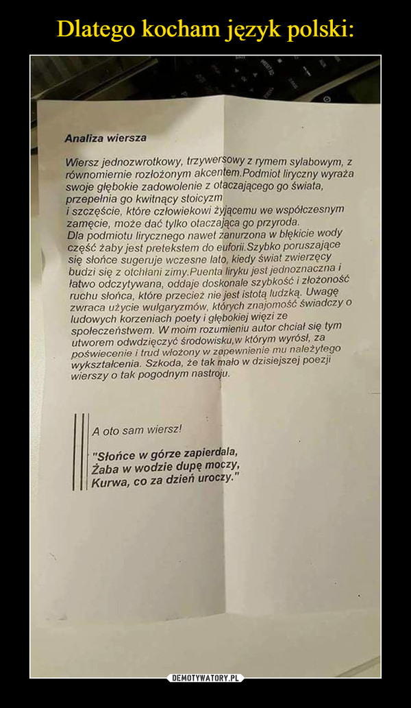 Dlatego Kocham Język Polski Demotywatorypl