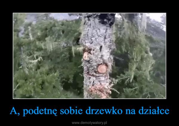 A, podetnę sobie drzewko na działce –