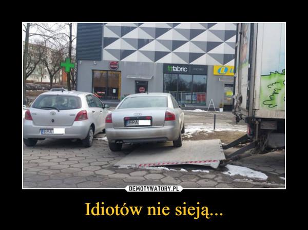 Idiotów nie sieją... –