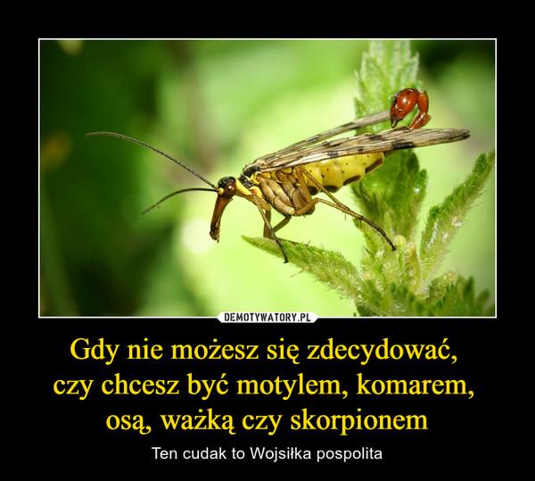 Gdy nie możesz się zdecydować, czy chcesz być motylem, komarem, osą, ważką czy skorpionem – Ten cudak to Wojsiłka pospolita