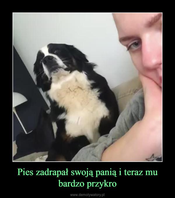 Pies zadrapał swoją panią i teraz mu bardzo przykro –