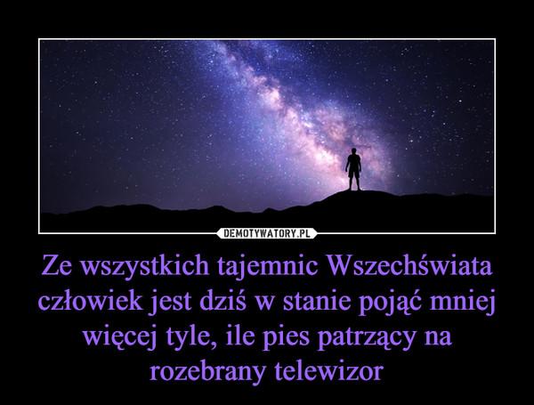 Ze wszystkich tajemnic Wszechświata człowiek jest dziś w stanie pojąć mniej więcej tyle, ile pies patrzący na rozebrany telewizor –