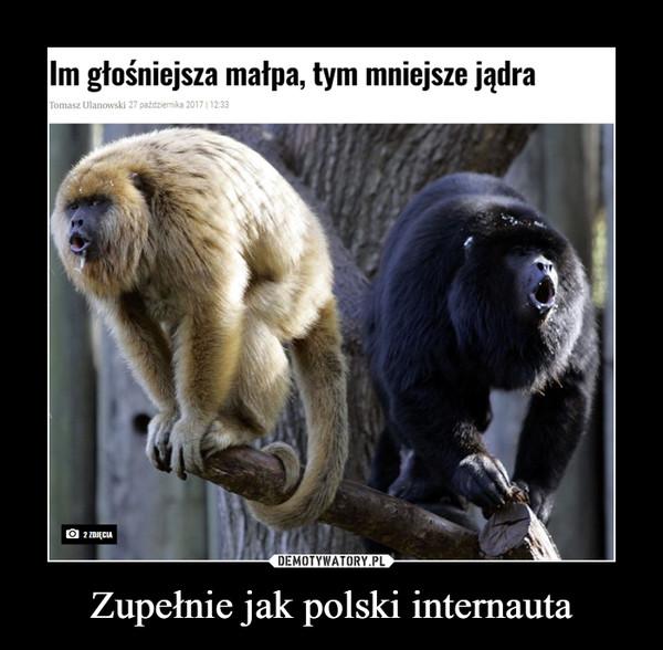 Zupełnie jak polski internauta –