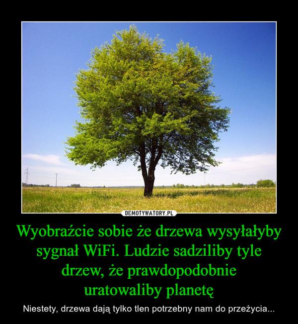 Wyobraźcie sobie że drzewa wysyłałyby sygnał WiFi. Ludzie sadziliby tyle drzew, że prawdopodobnieuratowaliby planetę – Niestety, drzewa dają tylko tlen potrzebny nam do przeżycia...